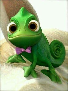 pascal-tangled-cute-bowtie